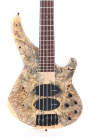 Sandberg Custom 5 Buckeye Burl top with Swamp Ash back